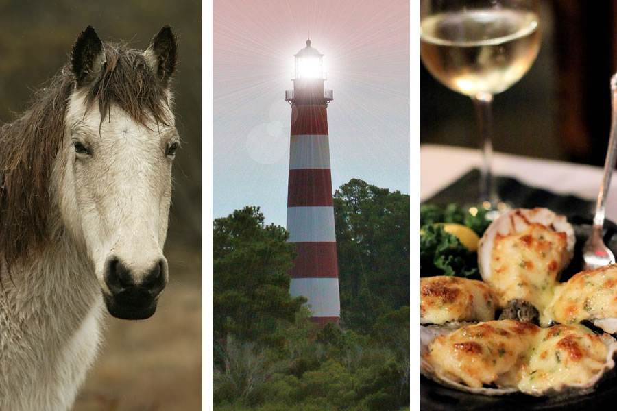 The Perfect Weekend Getaway in Chincoteague, Virginia